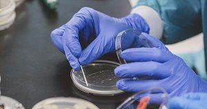 Бактериологические методы исследования-дистанционное обучение